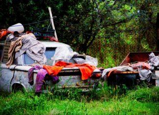 Dirty Car Survey