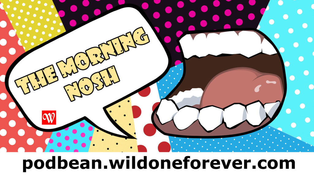 wildone forever, i love my mother but, meredith loughran, the morning nosh, real talk